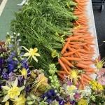 CarrotsandFlowers