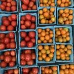 CherryTomatoes